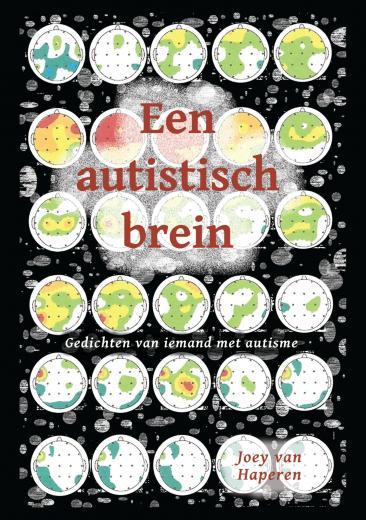 Een autistisch brein